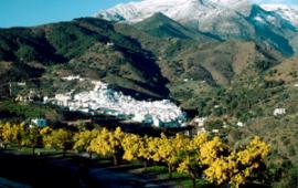 Jornadas técnicas de prevención en drogodependencias en la Sierra de las Nieves