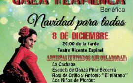 Gala Flamenca Solidaria, Ronda 8 dic.