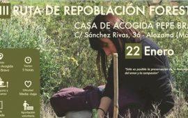 III Ruta de Repoblación forestal Pepe Bravo