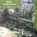 Ruta etnobotánica en la Sierra de las Nieves, 21 mayo