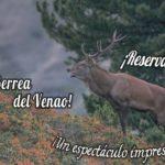 Época de berrea en la Eco Reserva de Ojén