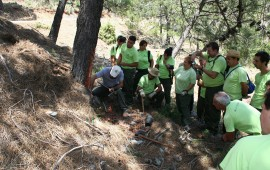 The Sierra de las Nieves trying to recover the old office of resinero